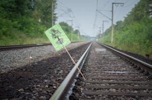 Gleisblockade hambachbahn-43